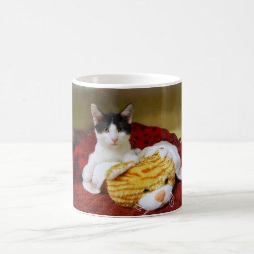 Gatito con la taza del tigre del juguete
