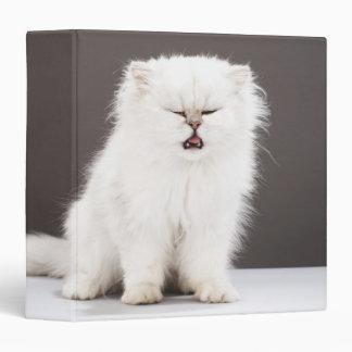 """Gatito con los ojos cerrados carpeta 1 1/2"""""""