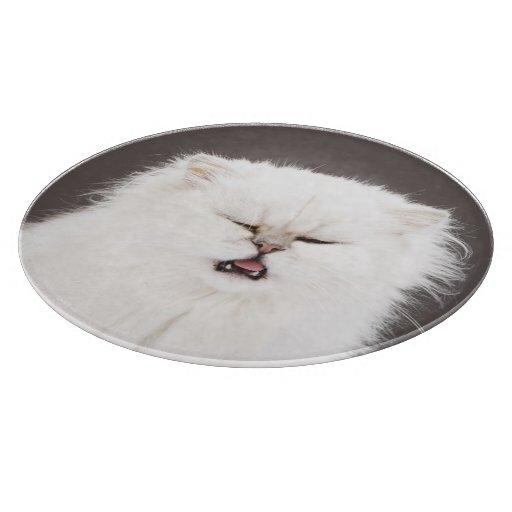 Gatito con los ojos cerrados tabla de cortar
