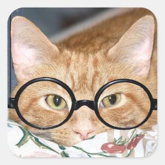 Gatito con los vidrios pegatina cuadrada