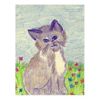 gatito cosechado tarjetas postales