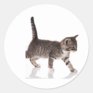 gatito de acecho pegatina redonda