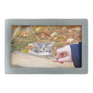 Gatito de dos desamparados que juega con un hebilla de cinturón rectangular