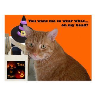Gatito de Halloween - desgaste qué Tarjetas Postales