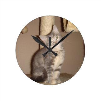 Gatito de Konfoozled Reloj