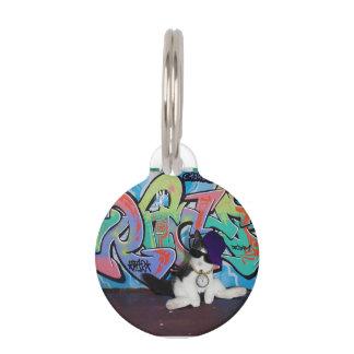 Gatito de la actitud del gato ..... y pared de la  identificador para mascota
