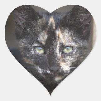 Gatito de la concha pegatina en forma de corazón