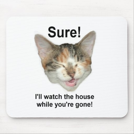 Gatito de la conquista alfombrilla de raton