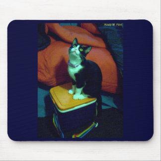 Gatito de la fiambrera del arco iris (neko) alfombrilla de ratones
