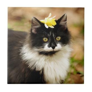 Gatito de la flor azulejo cuadrado pequeño