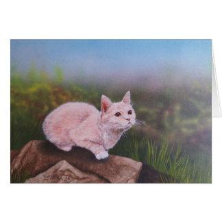 gatito de la Isla de Man Tarjeta Pequeña