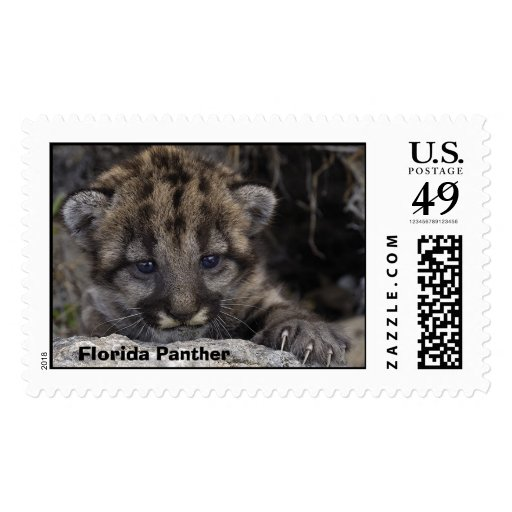 Gatito de la pantera de la Florida # 227 Sello