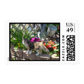 Gatito de la primavera sello postal