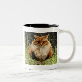 Gatito de la selva del patio trasero taza de café