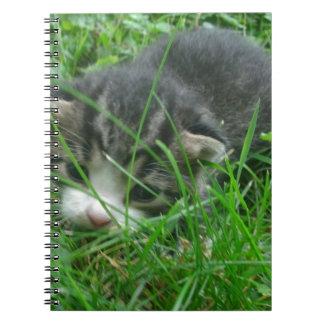 Gatito de la selva cuaderno
