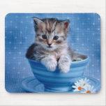 Gatito de la taza de té alfombrilla de raton