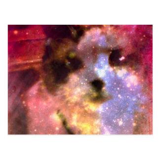 gatito de los borealis de la aurora de la raqueta postales