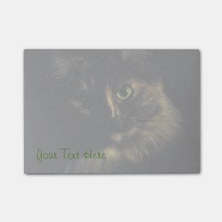 Gatito de los ojos verdes de la fotografía del post-it® nota