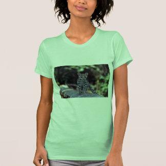 Gatito de Margay (wiedi del Felis) en árbol Camisetas