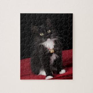 Gatito de pelo corto negro y blanco, 2 meses del 1 puzzles