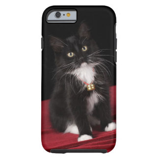 Gatito de pelo corto negro y blanco, 2 meses del funda de iPhone 6 tough