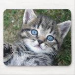 Gatito de plata de ojos azules adorable Mousepad d