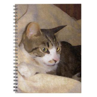 Gatito de seda pintado notebook