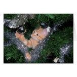 Gatito del árbol de navidad - modificado para requ tarjeta