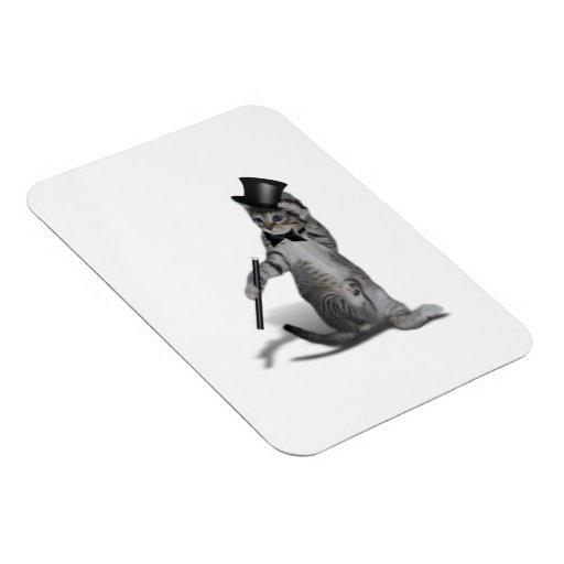 Gatito del baile de golpecito imán foto rectangular