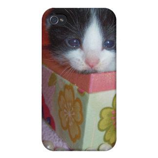Gatito del bebé en caso del iphone de la caja iPhone 4 carcasa