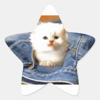 Gatito del bolsillo pegatina en forma de estrella
