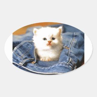 Gatito del bolsillo pegatina ovalada