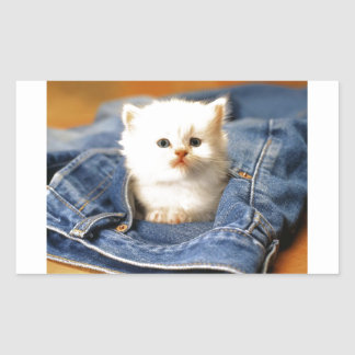 Gatito del bolsillo pegatina rectangular