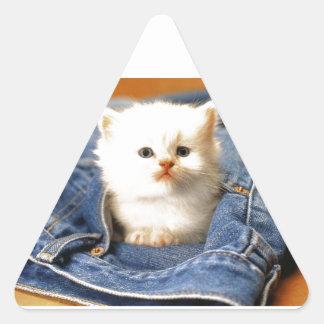 Gatito del bolsillo pegatina triangular