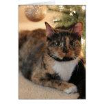 Gatito del calicó debajo del árbol de navidad tarjetón