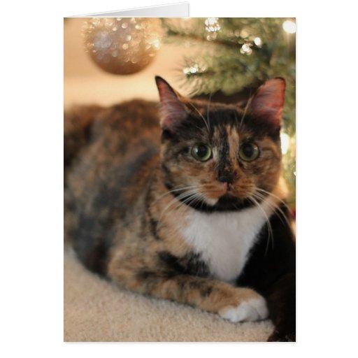 Gatito del calicó debajo del árbol de navidad tarjeta de felicitación