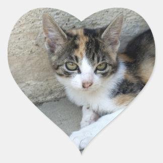Gatito del calicó pegatina en forma de corazón