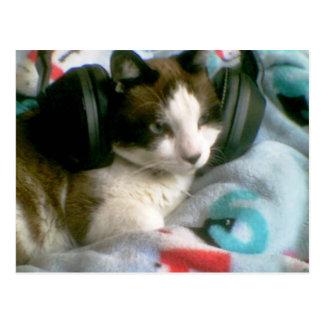 gatito del crítico de música de la raqueta tarjetas postales