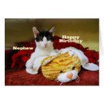 Gatito del feliz cumpleaños del sobrino con el tarjeta de felicitación
