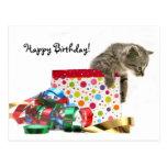 Gatito del feliz cumpleaños tarjetas postales