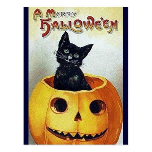 Gatito del feliz Halloween del vintage en una cala Postal