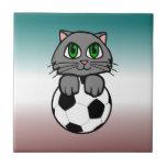 Gatito del fútbol