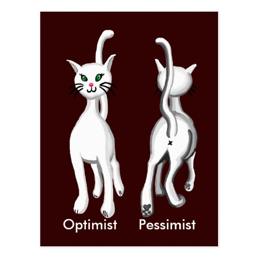 Gatito del gatito tarjeta postal