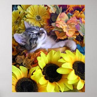 Gatito del gato del gatito del bebé de la diversió poster