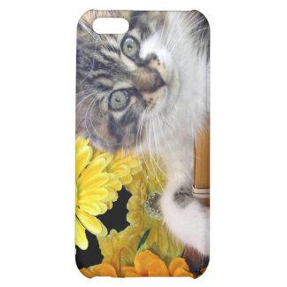 Gatito del gato del gatito del ~ de Cattitude, col