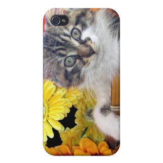 Gatito del gato del gatito del ~ de Cattitude, col iPhone 4/4S Fundas
