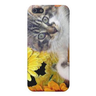 Gatito del gato del gatito del ~ de Cattitude, col iPhone 5 Coberturas