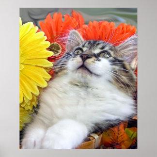 Gatito del gato del gatito, flores de la caída y G Impresiones