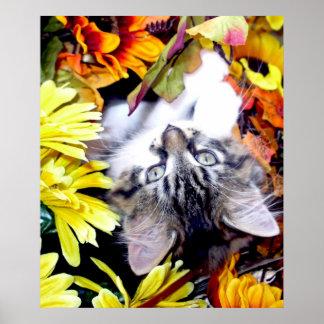 Gatito del gato del gatito upside-down en los gira impresiones