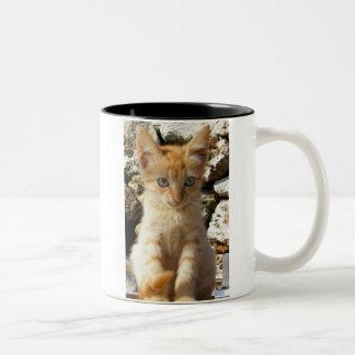 Gatito del jengibre tazas